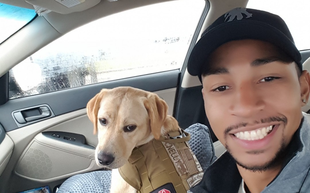 Nelly learns the skills to be a Service Dog